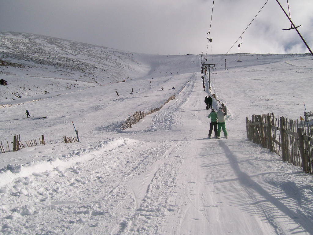 The Goose gully, March 2008